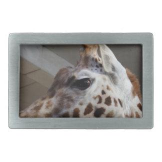 Giraffe Eye Belt Buckle
