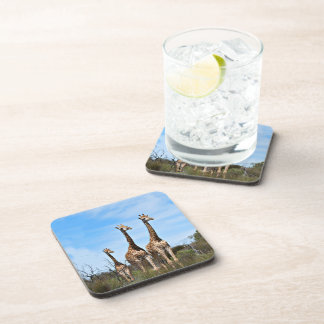 Giraffe Family Beverage Coasters