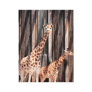Giraffe family canvas print
