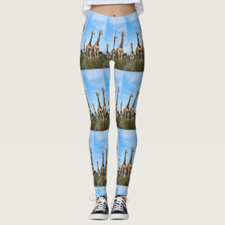 Giraffe Family Leggings