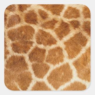 Giraffe Fur Print Square Sticker