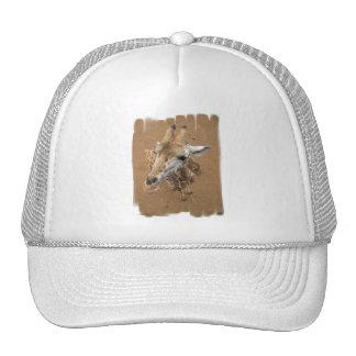Giraffe Gaze Baseball Hat