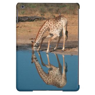 Giraffe (Giraffa Camelopardalis) Drinking Case For iPad Air