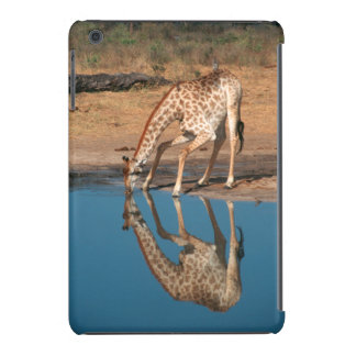 Giraffe (Giraffa Camelopardalis) Drinking iPad Mini Retina Covers