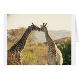 Giraffe Greeting Card - Stick Your Neck Out