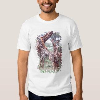 Giraffe Group or Herd w/ Young, Giraffa T-shirt
