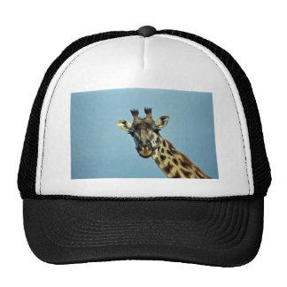 Giraffe Hats