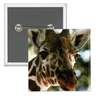 Giraffe Head Buttons