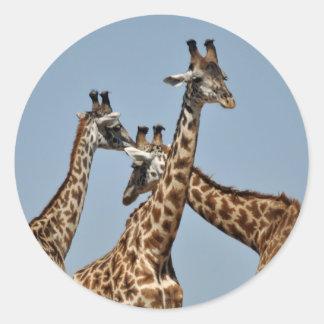 Giraffe Heads Sticker