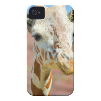 Giraffe iPhone 4 Case-Mate Case