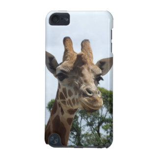 Giraffe iTouch Case iPod Touch 5G Cases