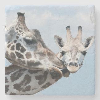 Giraffe Kisses Her Calf Stone Coaster