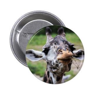 Giraffe Lunch Pin