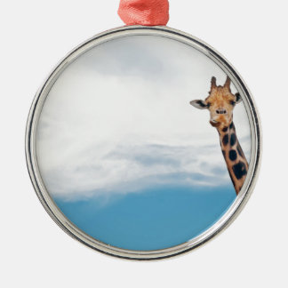 Giraffe neck and head against the clear blue sky metal ornament