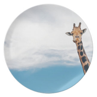 Giraffe neck and head against the clear blue sky plate