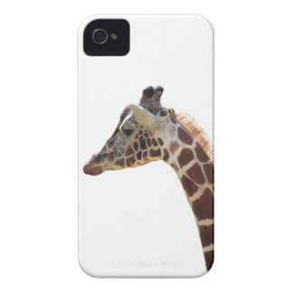 Giraffe Neck and Head iPhone 4 Case-Mate Cases