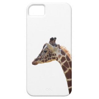 Giraffe Neck and Head iPhone 5/5S Cover