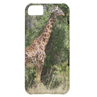 giraffe neck iPhone 5C case