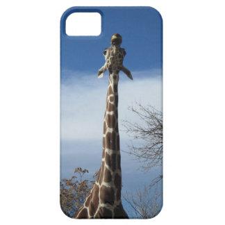Giraffe Neck iPhone Case iPhone 5 Cases