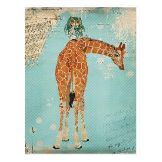 GIRAFFE & OWL Postcard