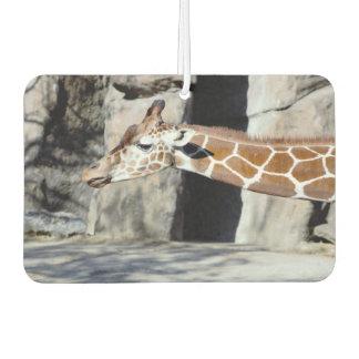 Giraffe Photo Air Freshener