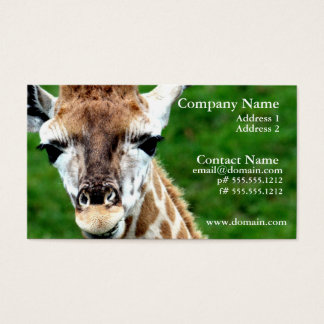 Giraffe Photo Business Card