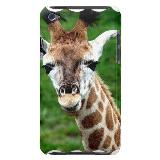 Giraffe Photo iTouch Case