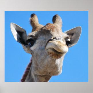 Giraffe photography profile poster