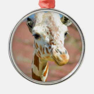 Giraffe Silver-Colored Round Decoration