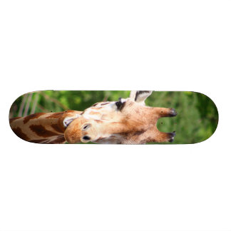Giraffe Skate Decks