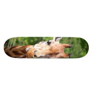 Giraffe Skate Board Deck