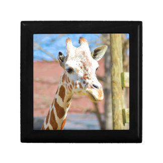 Giraffe Small Square Gift Box