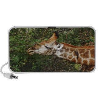Giraffe Notebook Speakers
