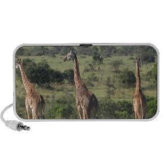 giraffe iPod speaker