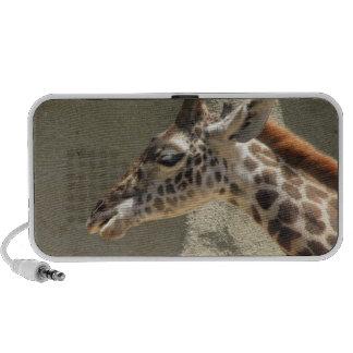 Giraffe Speakers