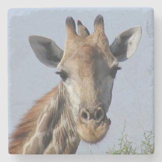 Giraffe Stone Coaster