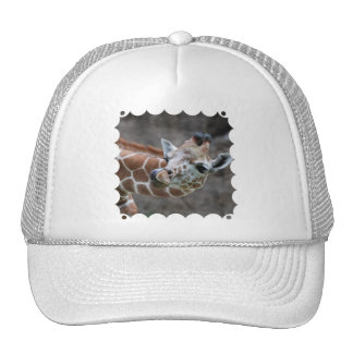 Giraffe Tongue Baseball Hat