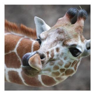 Giraffe Tongue Invitations