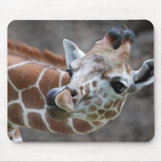 Giraffe Tongue Mouse Pads