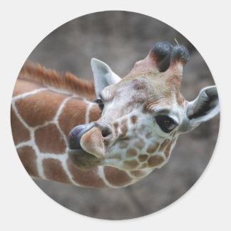 Giraffe Tongue Stickers