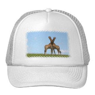 Giraffe Twins  Baseball Hat