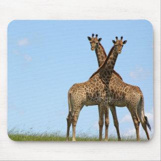 Giraffe Twins  Mouse Pad