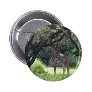 Giraffe with Long Neck 6 Cm Round Badge