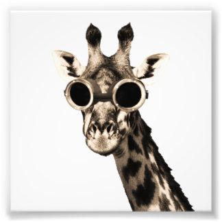 Giraffe With Steampunk Sunglasses Goggles Photograph