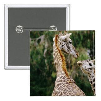 Giraffes 15 Cm Square Badge