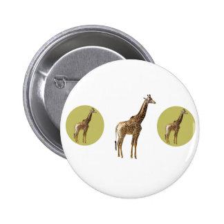 giraffes pin