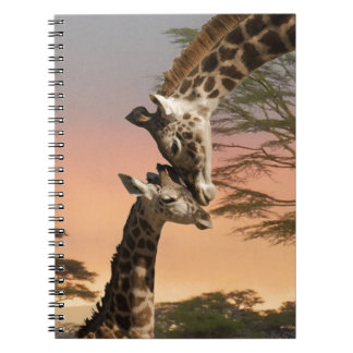 Giraffes Greeting Each Other Notebooks