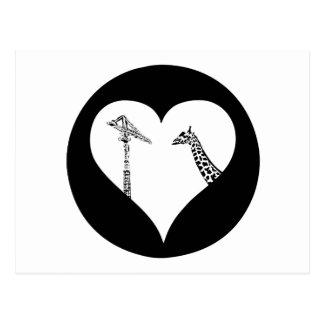 Giraffes Love Cranes Postcard