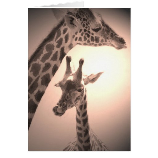 giraffes, mother and child greeting card