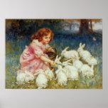 Girl feeding White Rabbits Poster